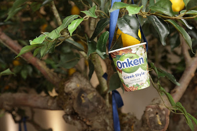 Onken Greek Style Yogurt
