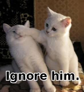 http://1.bp.blogspot.com/-zcyyIhSkw1o/TsR03cK3CZI/AAAAAAAAIr8/DgKpBA6JxFk/s400/lol+cats.jpg