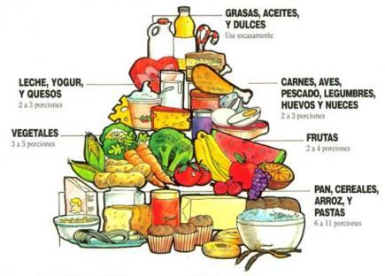 la piramide de los alimentos