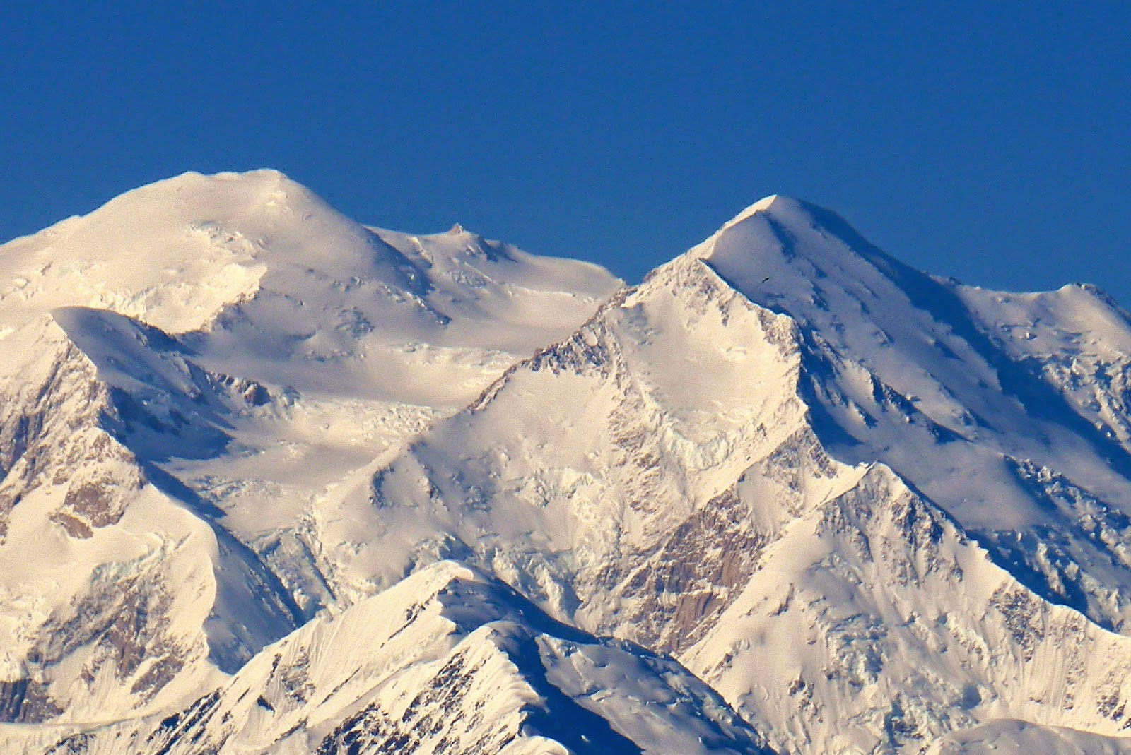 Denali, the Great One, 20,320 ft. or 6,193 m