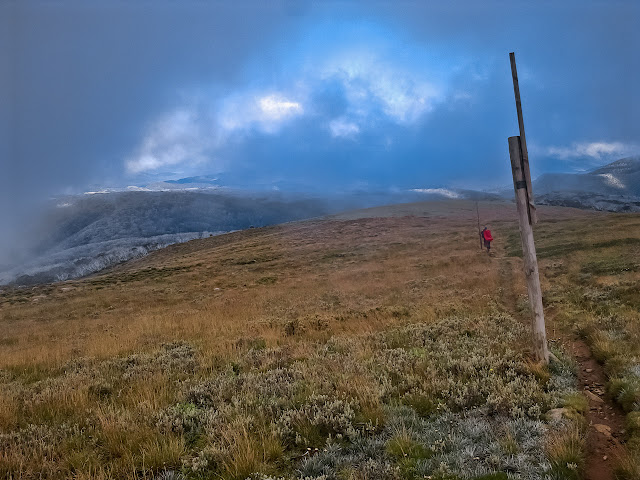 following snow pole track to cleve cole hut