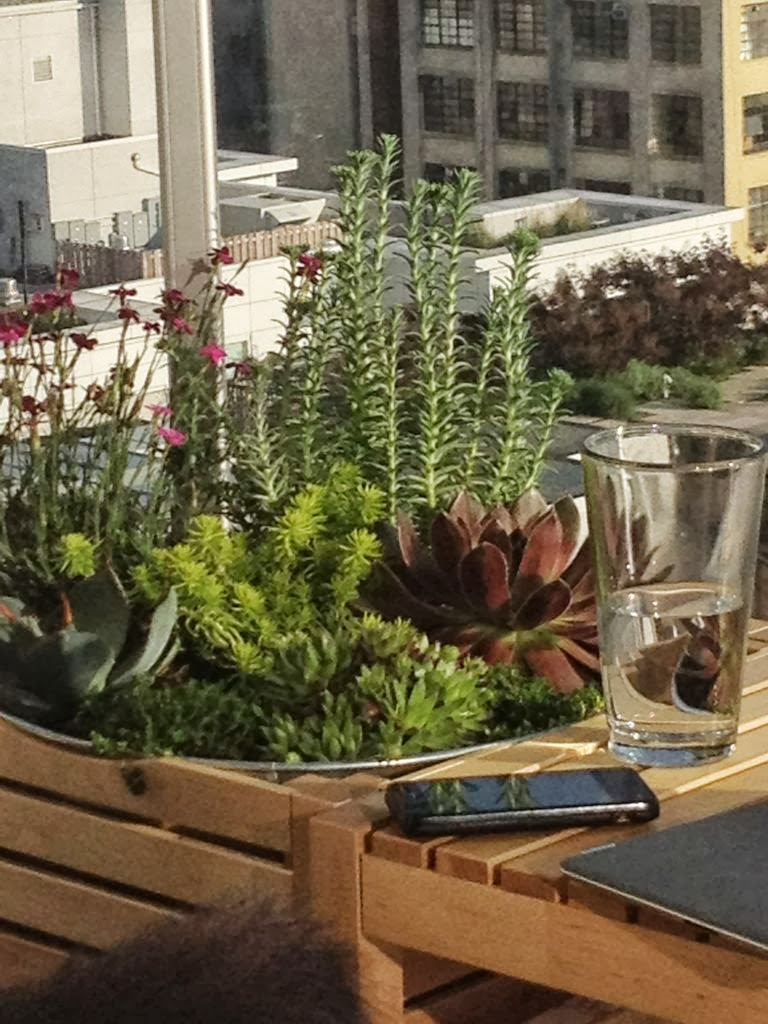 J N Taylor And Co Garden Planters For City Balcony By