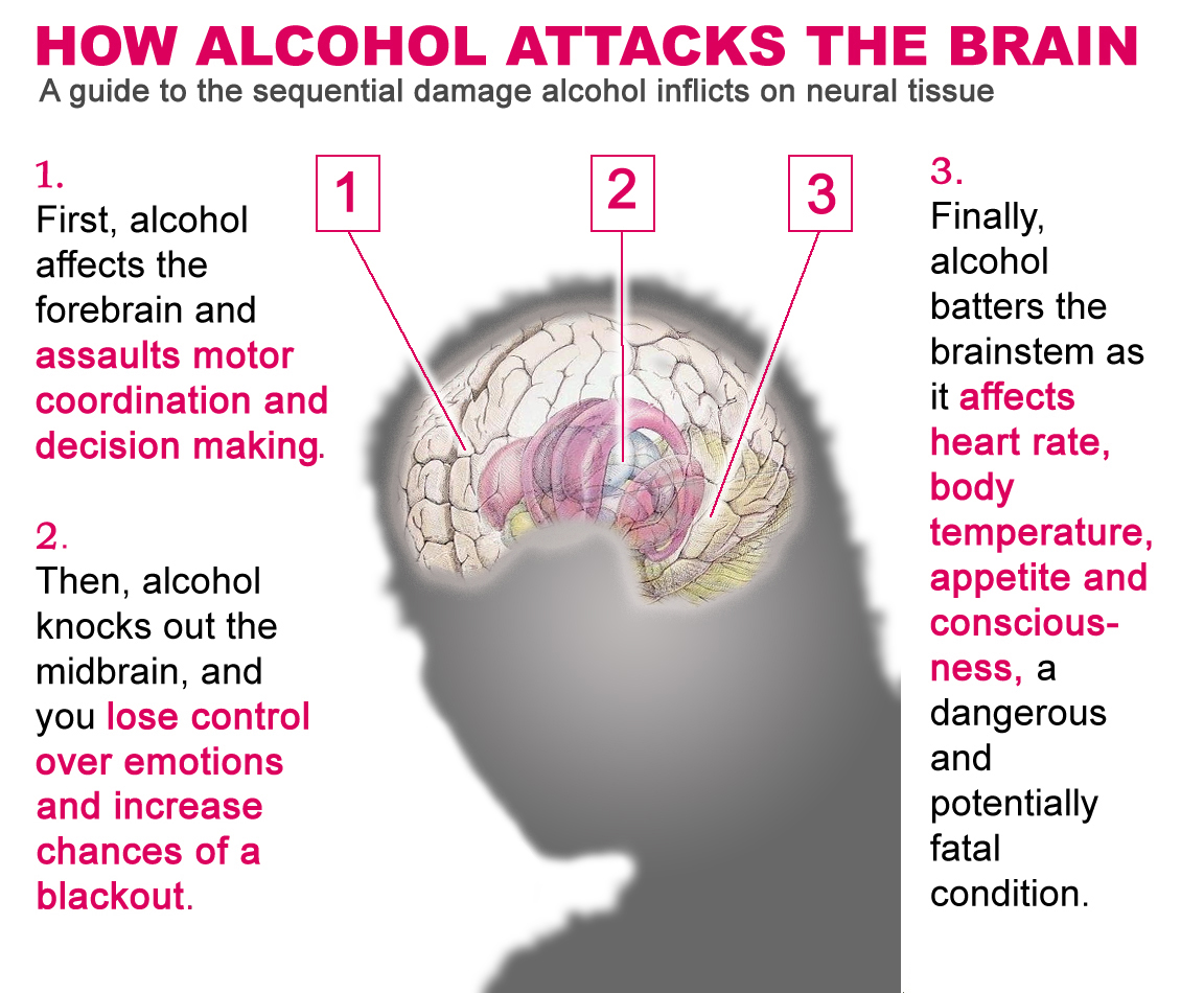 how to say that alcohol is messes with your brain