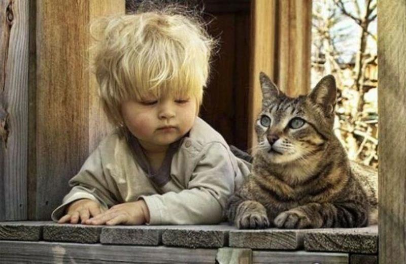 Foto bayi lucu dan kucing hewan kesukaannya