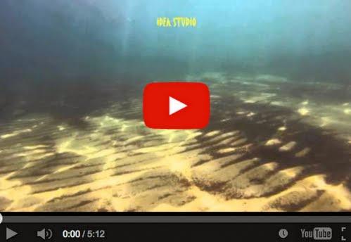 Άρτεμις - Κολύμπι και θαλασσινά παιχνίδια