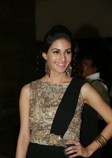 Actress Amyra Dastur Picture Gallery in Long Dress at Anekudu Audio Launch  27.JPG