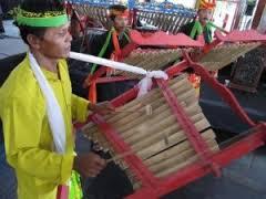 Alat Musik Tradisional Angklung Dwilaras