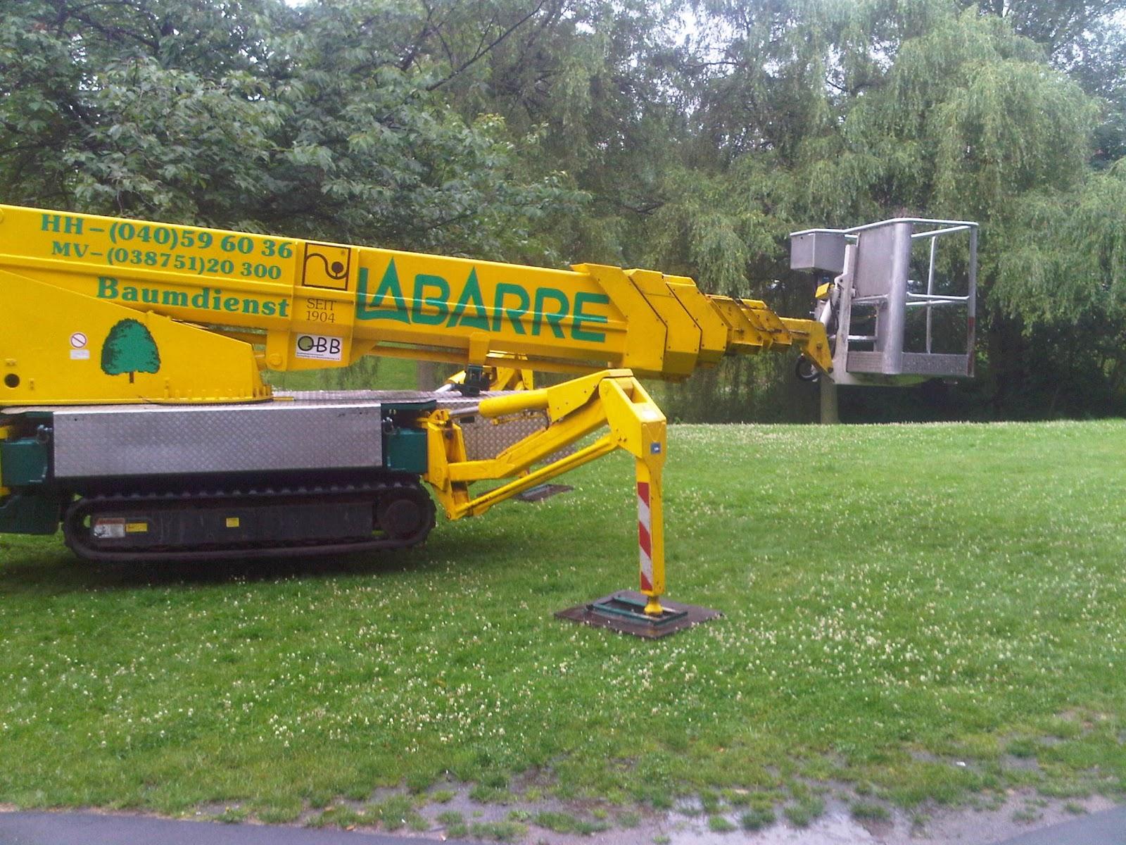 Garten-Cyborg Drehleiter auf Raupenfahrzeug im Park auf grüner Wiese