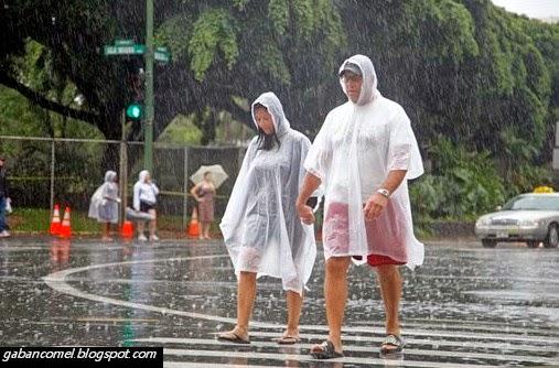 Pelik, Selama 247 Hari Pulau Ini Selalu Ditimpa Hujan