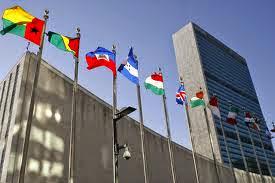 Participará la CEAV en sesión del Comité de Naciones Unidas contra las Desapariciones Forzadas