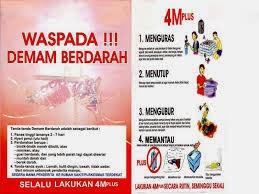 Gejala Demam Berdarah | Nyamuk Penyebab Demam Berdarah | Mengatasi Demam Berdarah | Mencegah Demam Berdarah | DBD