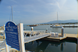Pez Vela Marina