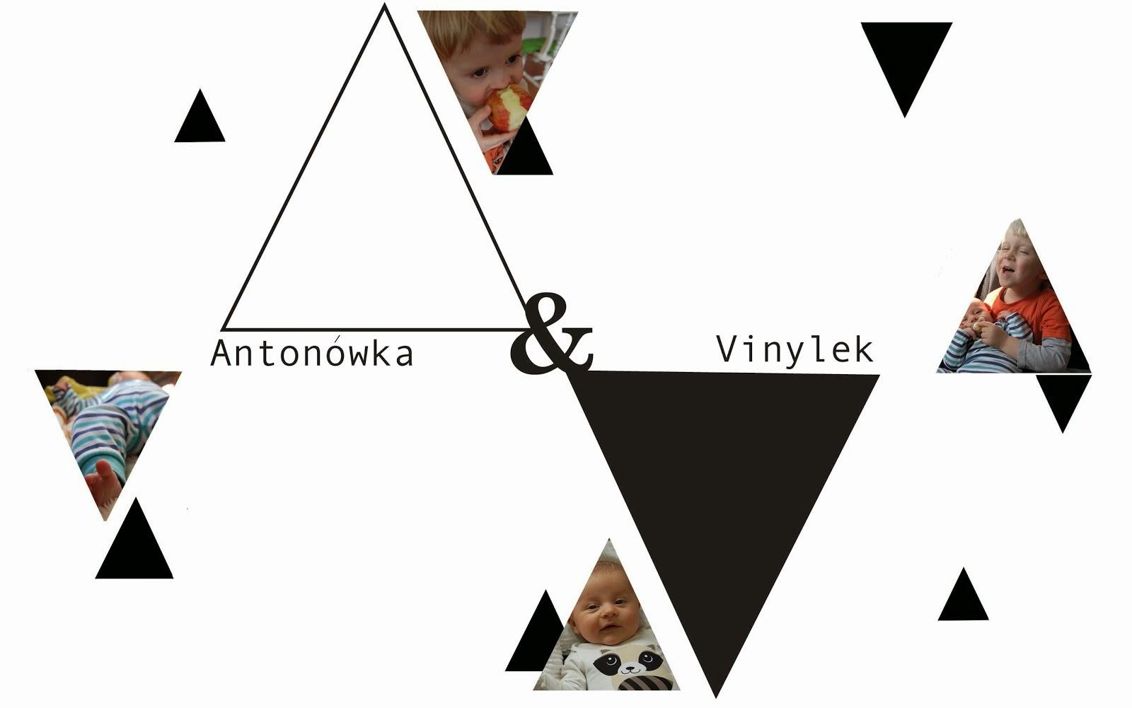 Antonowka & Vinylek