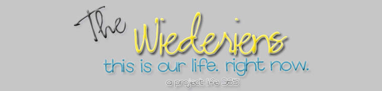 The Wiederiens: Project Life; a 365