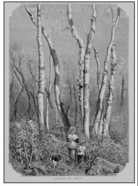 """UN VELL DIBUIX PUBLICAT A """"LA ILUSTRACIÓ CATALANA"""" ANY 1881"""
