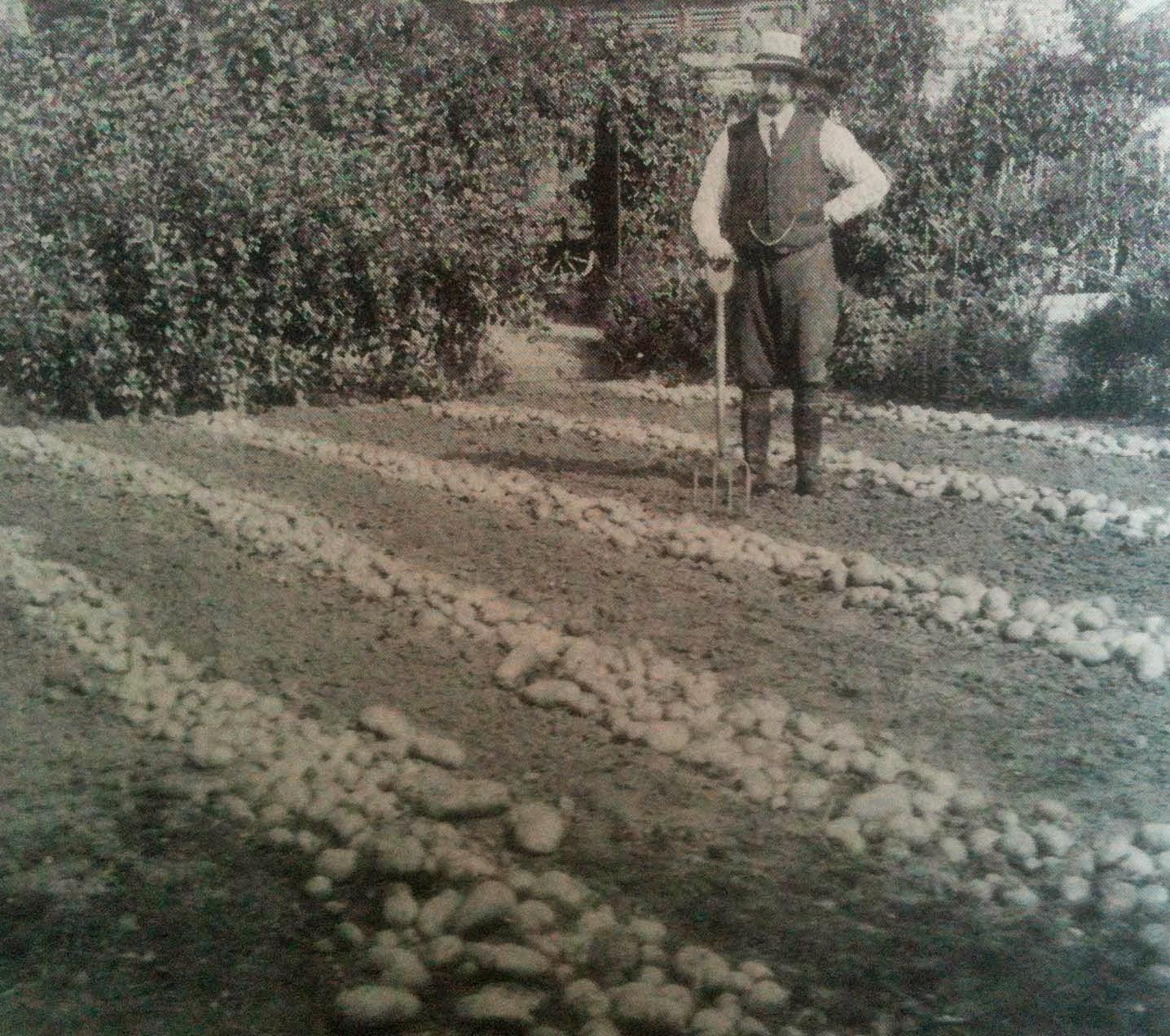 Don't buy into the myth of abundance, buy into food growing.