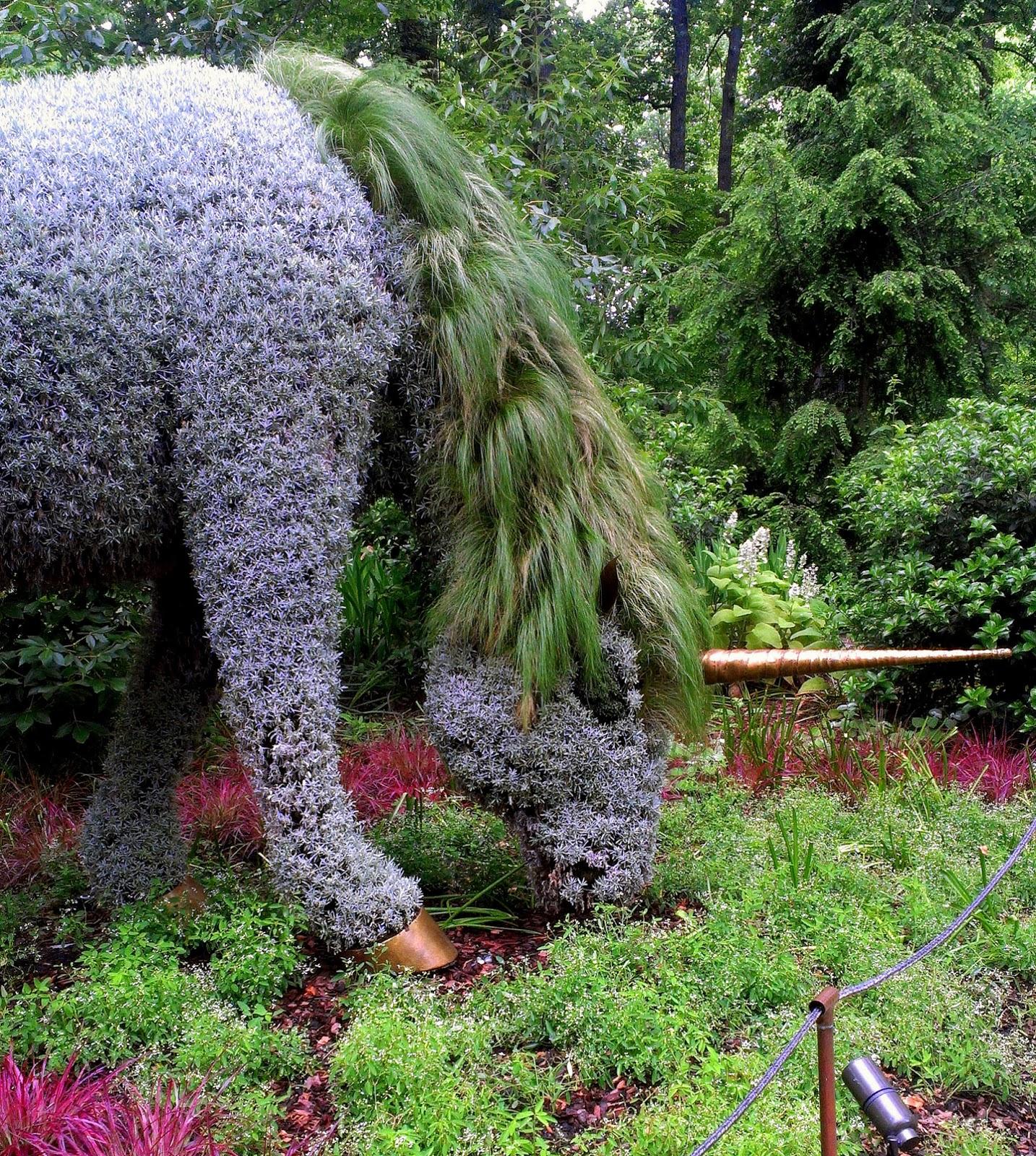 Atlanta Botanical Garden Skyline Gardens: Cecilia Young Photography
