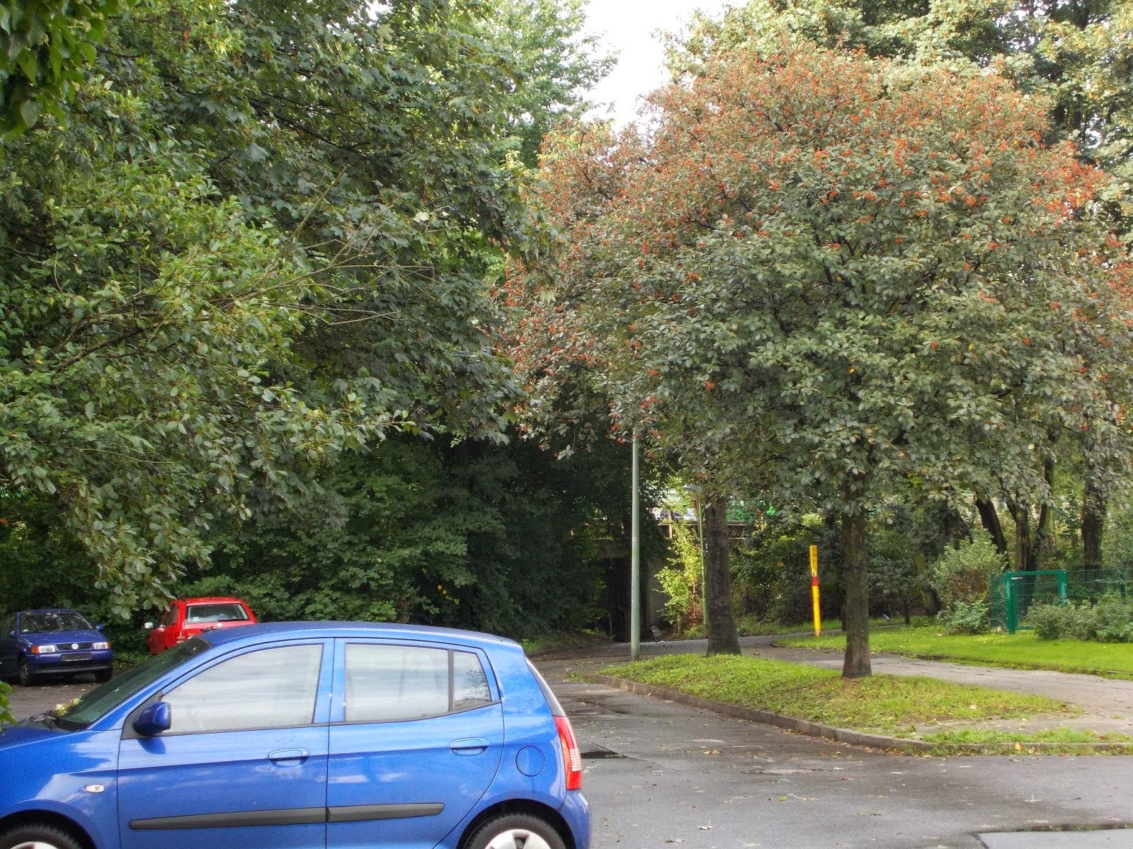 B das Gewerbegebiet Ripshorster Straße den Bahnhof Dellwig Pfarrkirche St Michael Esso Tankstelle auf der Haus Horl Straße Ecke Langhölterweg