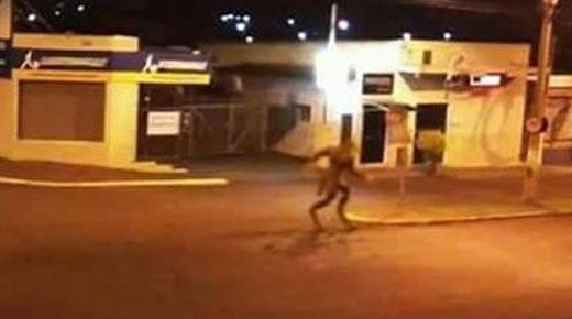 Fotografía de Hombre Lobo tiene a ciudad brasileña en alerta