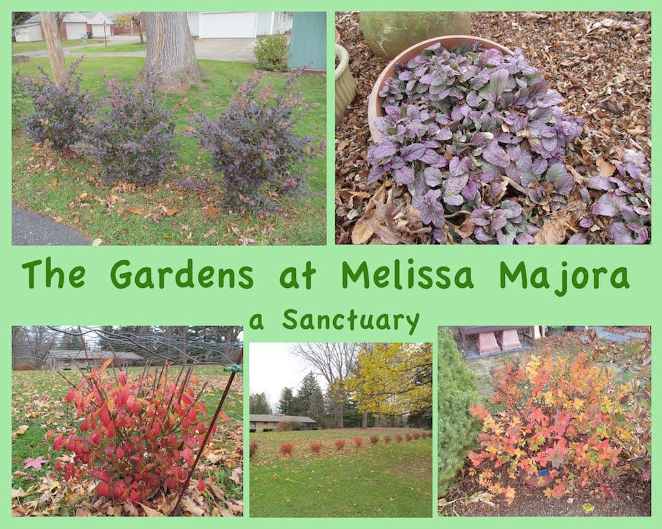 The Gardens at Melissa Majora - a Honeybee Sanctuary
