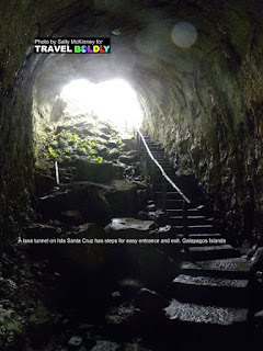 Travel Boldly Galapagos Island - This lava tunnel on Isla Santa Cruz has steps for easy entrance and exit.