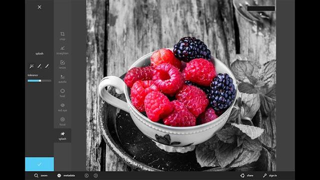 برنامج مجاني لتحرير وتحسين الصور علي نظام ويندوز 10 Autodesk Pixlr
