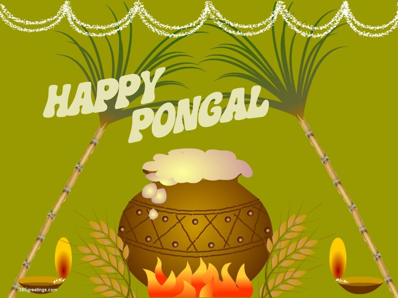 Free Greeting Cards Download Cards For Festival Pongal Greetings