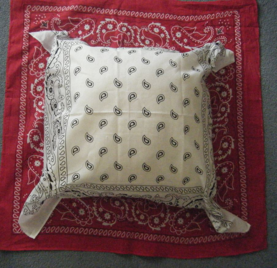 primary inspiration no sew classroom pillow diy project. Black Bedroom Furniture Sets. Home Design Ideas