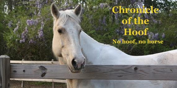 Chronicle of the Hoof