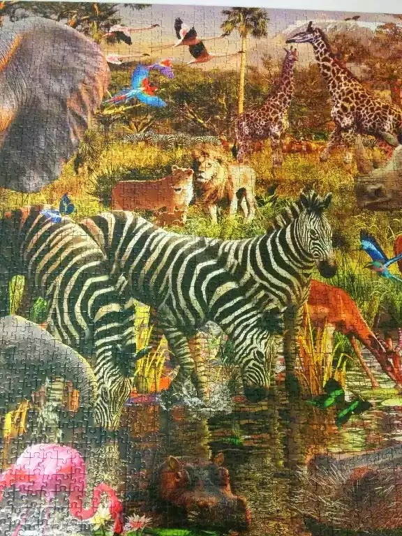 Ravensburger African Animals 3000 piece jigsaw puzzle close-up 2