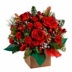 Send Christmas Flowers Australia Delivery