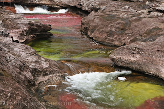 grey أجمل أنهار العالم ، نهر كانو كريستال ذو الألوان الخمسة في كولومبيا