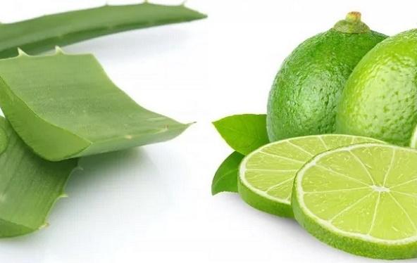 Limpe o intestino, o fígado e perca peso com esta poderosa receita com babosa e limão