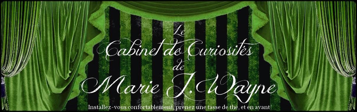 Le cabinet de curiosités de Marie J. W.