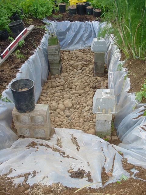 Slug moat pond rainwater catchment protected nursery for Concrete block pond construction