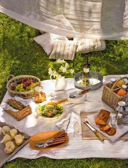 tiffany jones interiors the lost art of the picnic. Black Bedroom Furniture Sets. Home Design Ideas