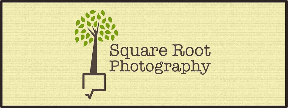 Square Root Photography