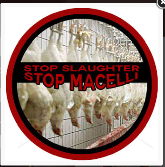 STOP SLAUGHTERS - STOP MACELLI