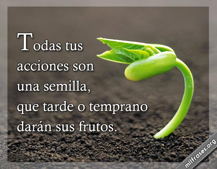 Todas tus acciones son una semilla, que tarde o temprano darán sus frutos. frases para compartir en imágenes