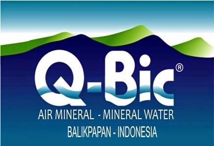 Q-BIC