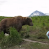 A Brown Bear Sat Down Right Next To Him While He Filmed It All!