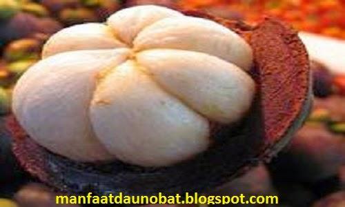 manfaat khasiat kulit buah manggis