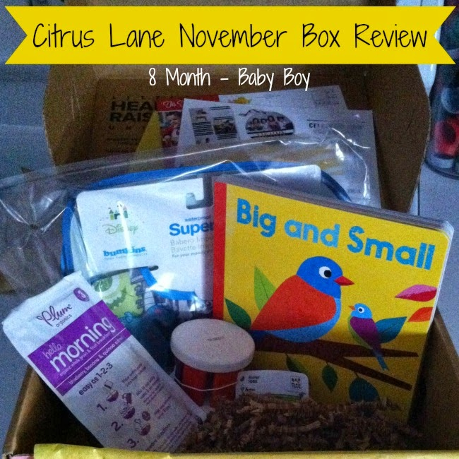 Citrus Lane Subscription Box Review