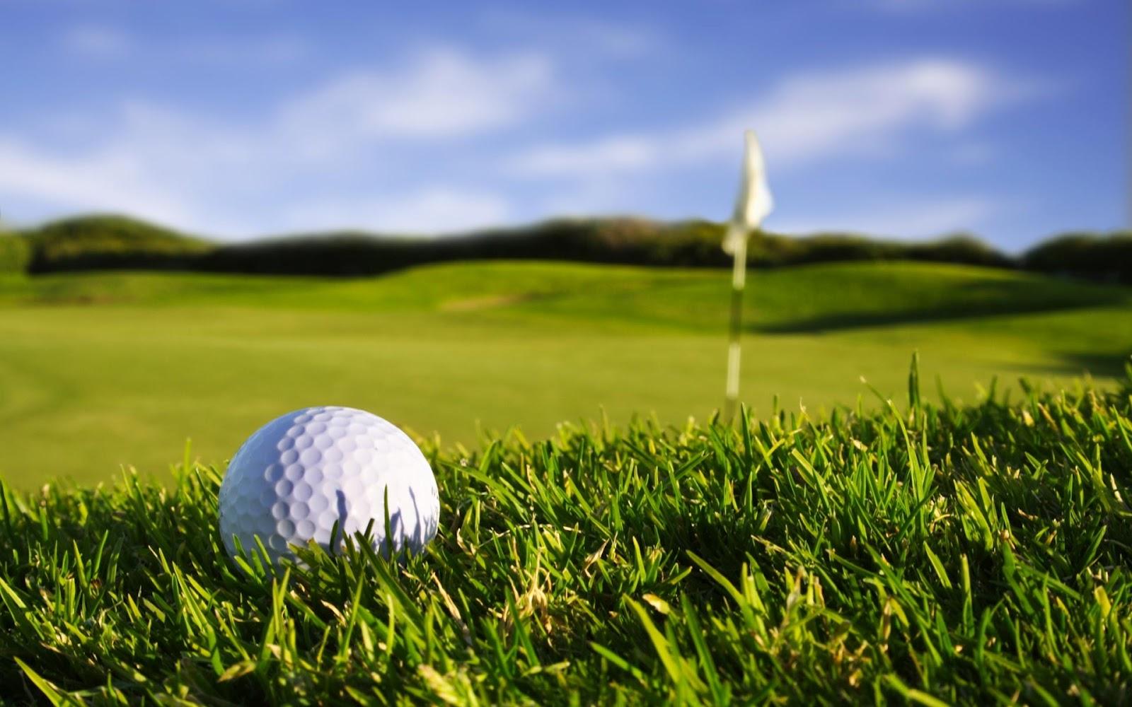 http://1.bp.blogspot.com/-zl62gGwk3XA/UCYujUTLWNI/AAAAAAAAMK8/r0w8evPhyWM/s1600/golf.jpg