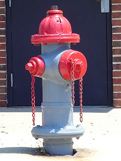 red and blue fire hydrant in the city