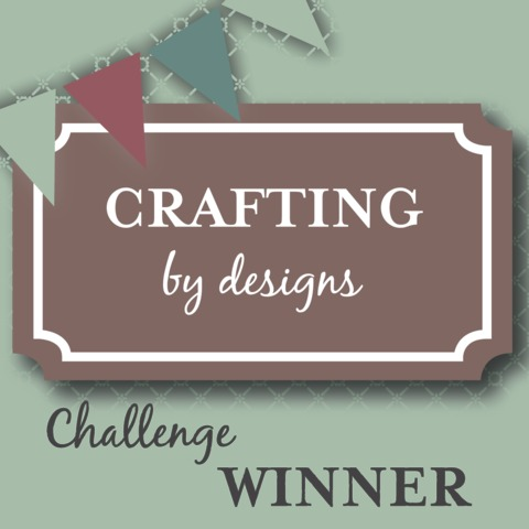 Winner of Crafting By Designs Challenge Blog