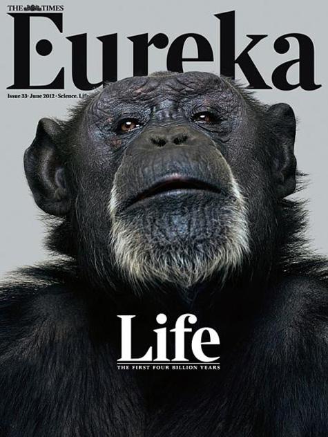 Eureka Ape Cover