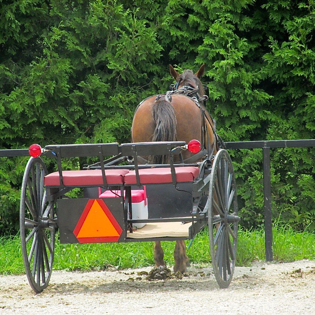 Nappanee     Indiana Amish Country