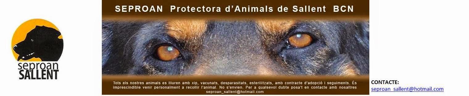 SEPROAN - PROTECTORA D'ANIMALS DE SALLENT