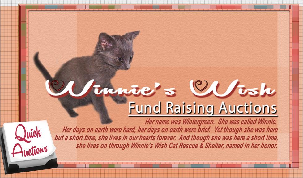 Winnies Wish Auction Site